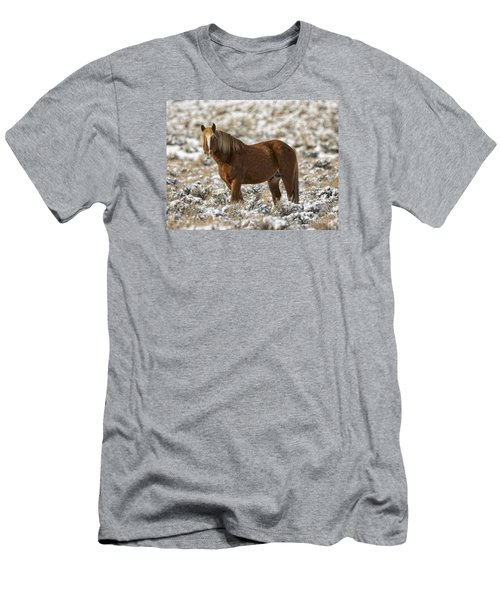 Winter Stallion Men's T-Shirt (Athletic Fit)