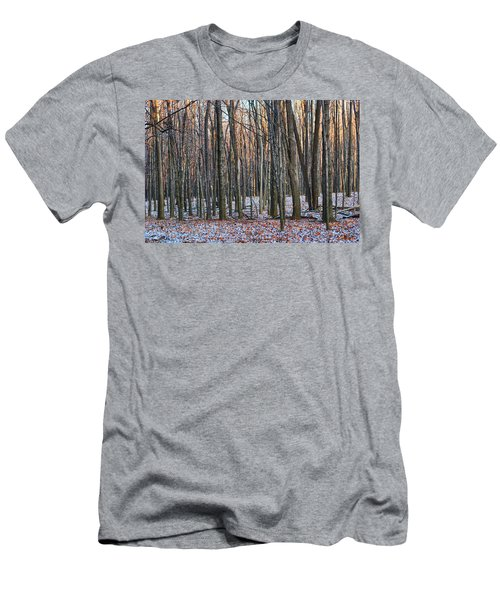Winter - Uw Arboretum Madison Wisconsin Men's T-Shirt (Athletic Fit)