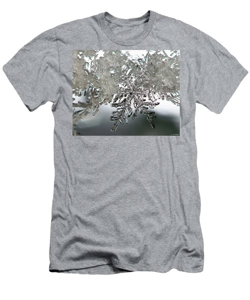 Winter's Glory Men's T-Shirt (Slim Fit) by Lauren Radke