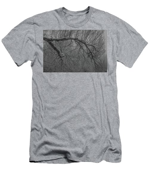 Wintery Tree Men's T-Shirt (Athletic Fit)