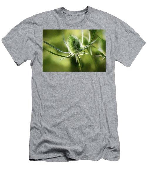 Wonderful Teasel 2 - Men's T-Shirt (Athletic Fit)