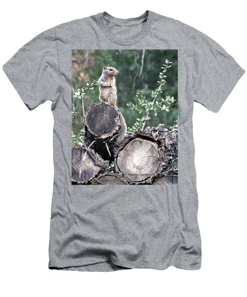 Woodpile Squirrel Men's T-Shirt (Athletic Fit)