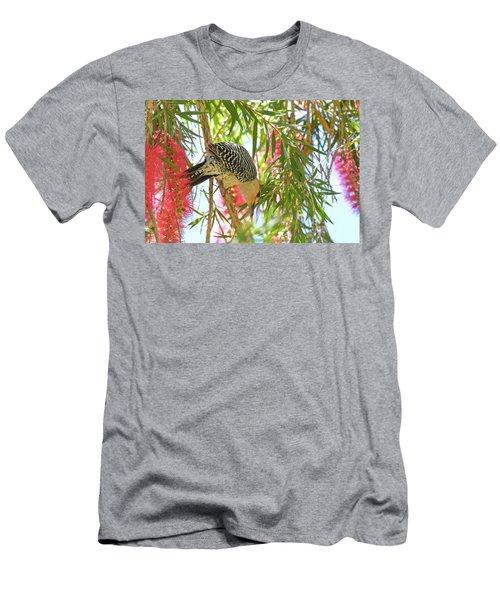 Woody In The Bottlebrush Men's T-Shirt (Athletic Fit)