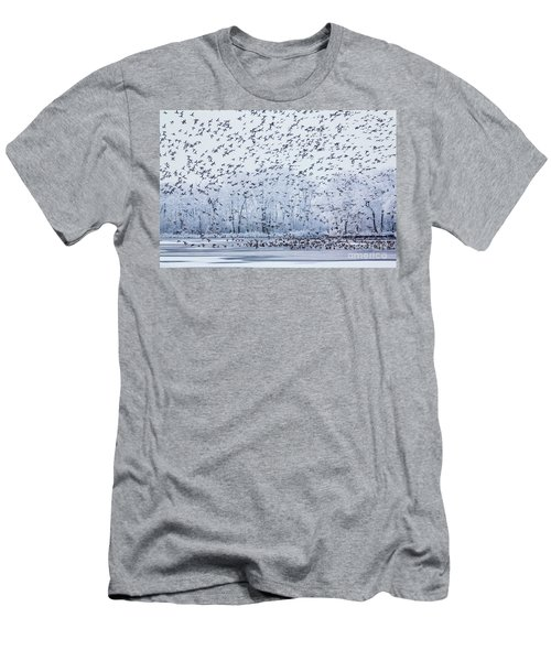 World Of Birds Men's T-Shirt (Athletic Fit)