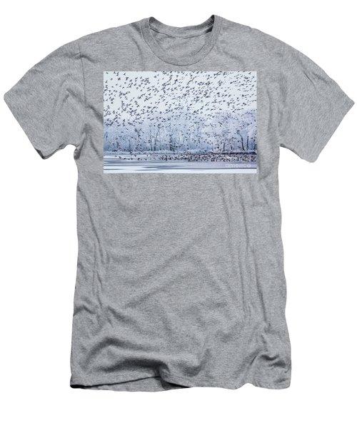 World Of Birds Men's T-Shirt (Slim Fit)