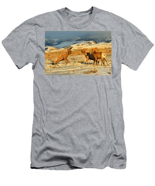 Wyoming Big Horn Brawlers 2 Men's T-Shirt (Athletic Fit)