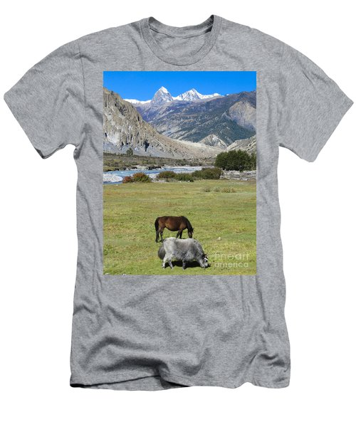 Yak And Horse Men's T-Shirt (Athletic Fit)