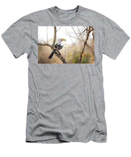 Yellow-billed Hornbill Sitting In A Tree.  Men's T-Shirt (Slim Fit) by Jane Rix