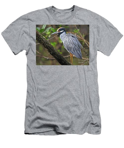 Yellow Crowned Night Heron Men's T-Shirt (Athletic Fit)