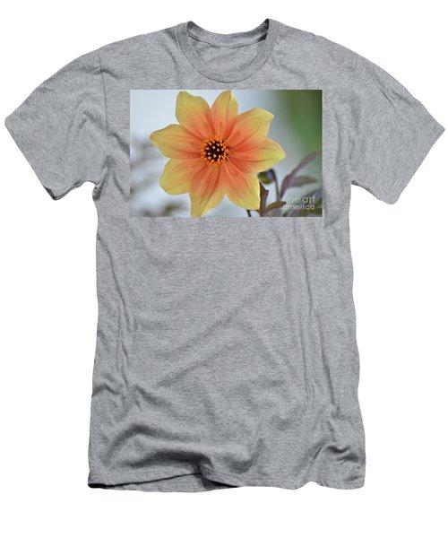 Yellow Orange Dahlia Perfection Men's T-Shirt (Athletic Fit)