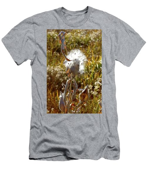 Yosemite Milkweed Men's T-Shirt (Slim Fit) by Amelia Racca