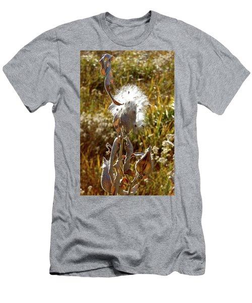 Yosemite Milkweed Men's T-Shirt (Athletic Fit)