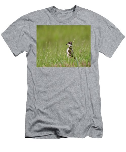 Young Killdeer In Grass Men's T-Shirt (Athletic Fit)