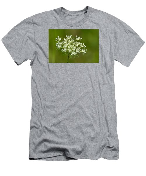 Men's T-Shirt (Slim Fit) featuring the photograph Young Queen Anne's Lace  by Lyle Crump