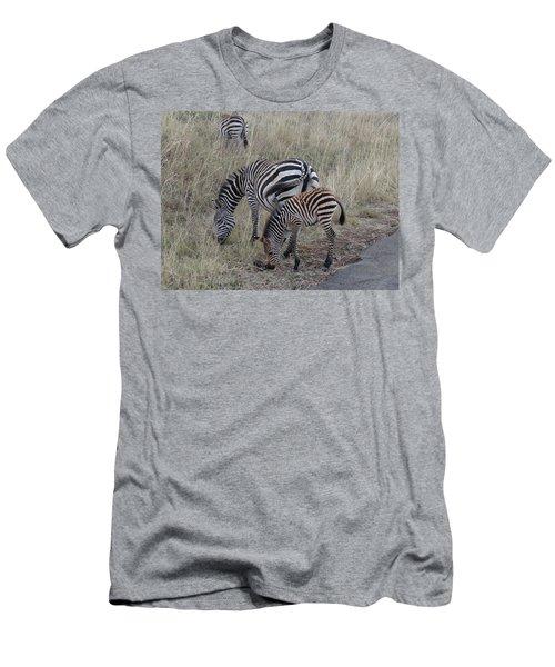 Zebras In Kenya 1 Men's T-Shirt (Slim Fit) by Exploramum Exploramum