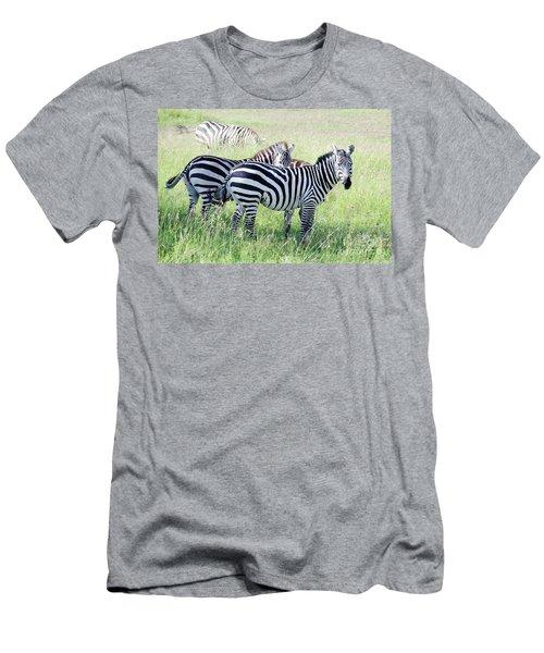 Zebras In Serengeti Men's T-Shirt (Slim Fit) by Pravine Chester