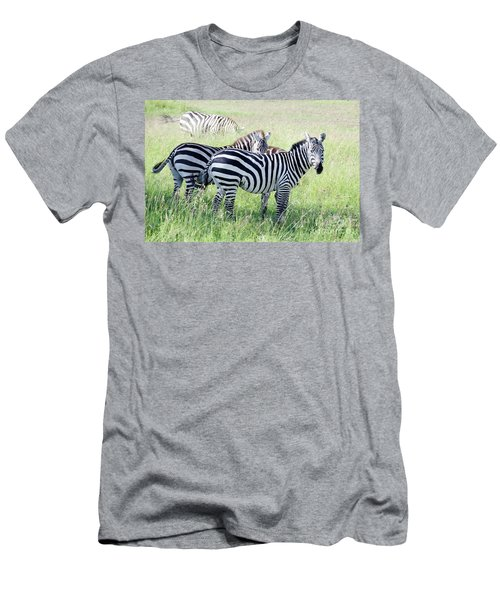 Zebras In Serengeti Men's T-Shirt (Athletic Fit)