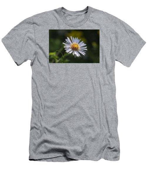 Zigzag Aster Men's T-Shirt (Athletic Fit)