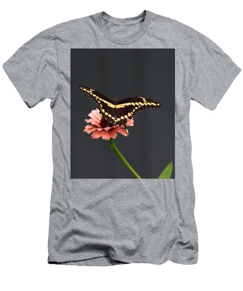 Zinnia With Butterfly 2708  Men's T-Shirt (Athletic Fit)