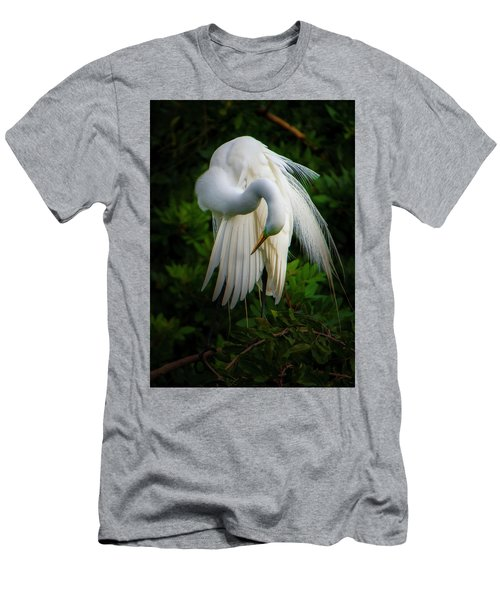 Breeding Plumage And Color Men's T-Shirt (Athletic Fit)