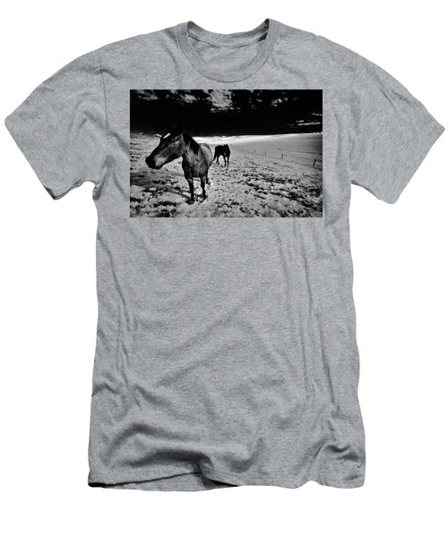 Men's T-Shirt (Athletic Fit) featuring the photograph Horses On The Palouse by David Patterson