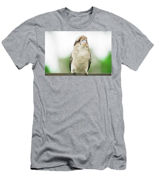 Men's T-Shirt (Athletic Fit) featuring the photograph Kookaburra Gracefully Resting During The Day. by Rob D Imagery