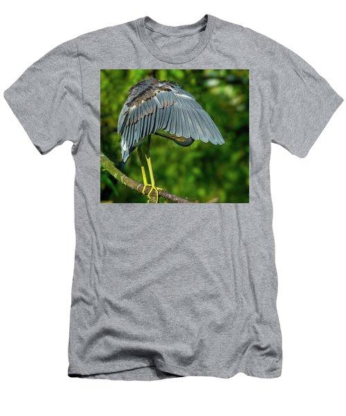 Preening Reddish Heron Men's T-Shirt (Athletic Fit)
