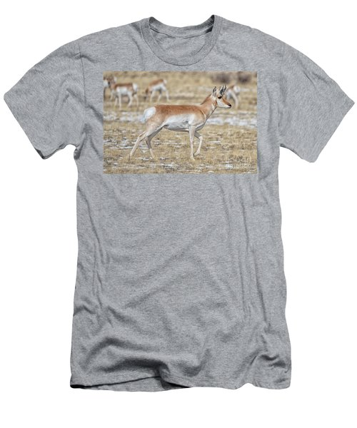 Men's T-Shirt (Athletic Fit) featuring the photograph Pronghorn by Bitter Buffalo Photography