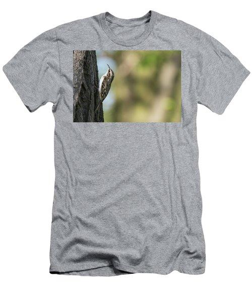 Treecreeper Men's T-Shirt (Athletic Fit)