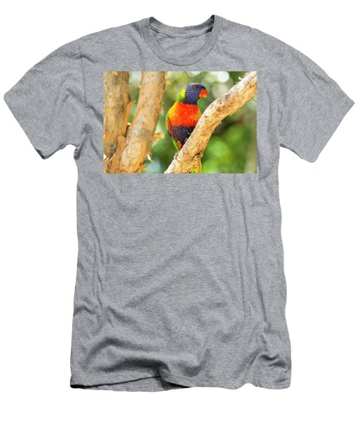Men's T-Shirt (Athletic Fit) featuring the photograph Rainbow Lorikeet by Rob D Imagery