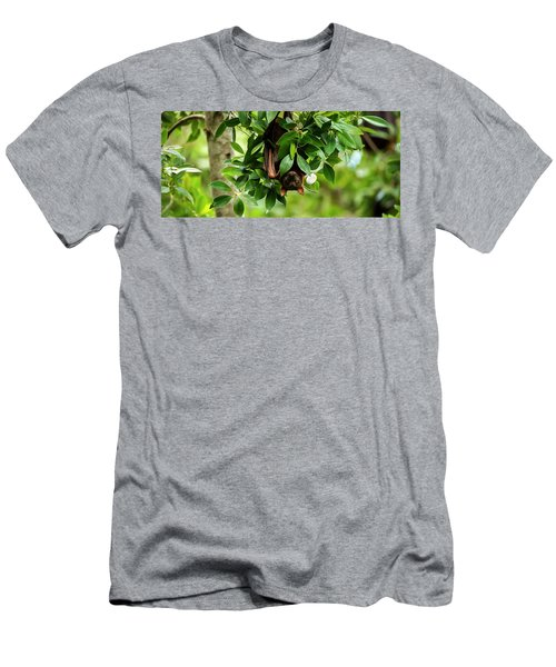 Men's T-Shirt (Athletic Fit) featuring the photograph Flying Fox Bat by Rob D Imagery