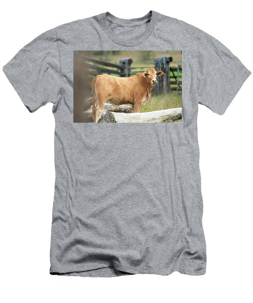Men's T-Shirt (Athletic Fit) featuring the photograph Bull In The Country Side. by Rob D Imagery