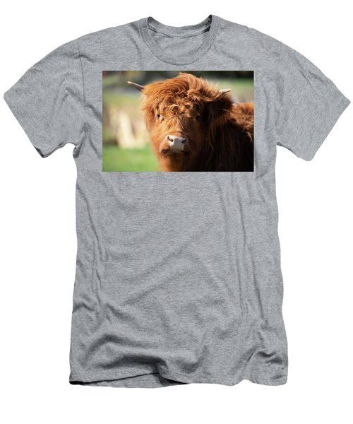 Men's T-Shirt (Athletic Fit) featuring the photograph Highland Cow On The Farm by Rob D Imagery