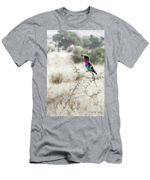 A Lilac Breasted Roller Sings, Desaturated Men's T-Shirt (Athletic Fit)