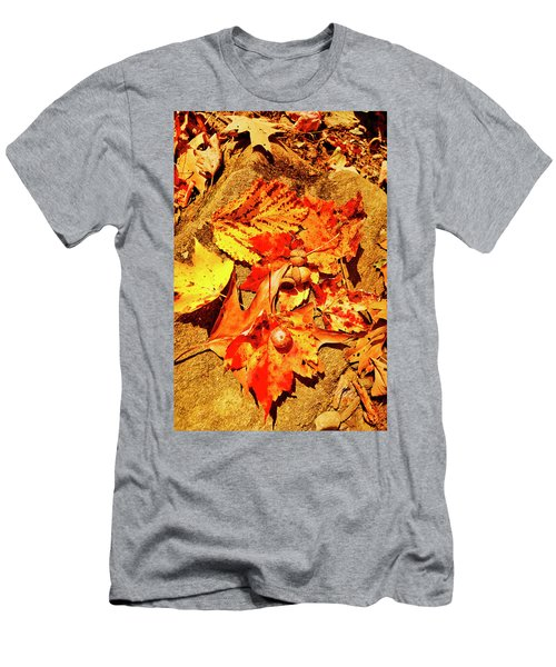 Acorns Fall Maple Oak Leaves Men's T-Shirt (Athletic Fit)