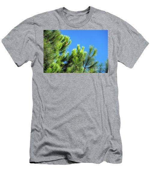 Adriatic Pine Against Blue Sky  Men's T-Shirt (Athletic Fit)