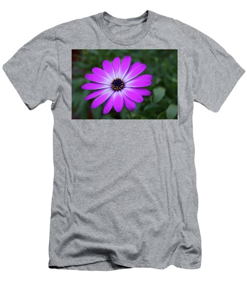 African Daisy Men's T-Shirt (Athletic Fit)