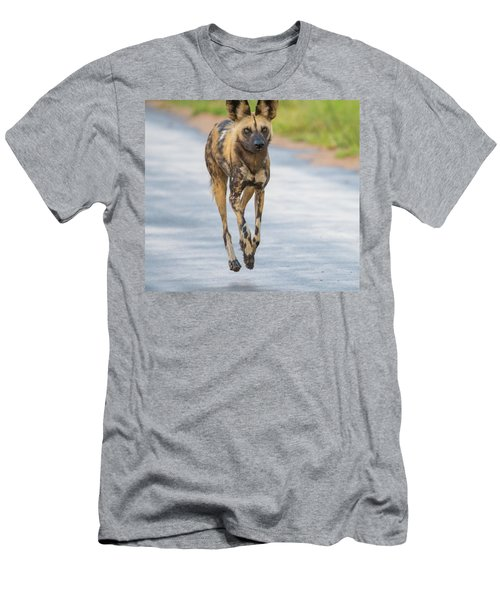 African Wild Dog Bouncing Men's T-Shirt (Athletic Fit)