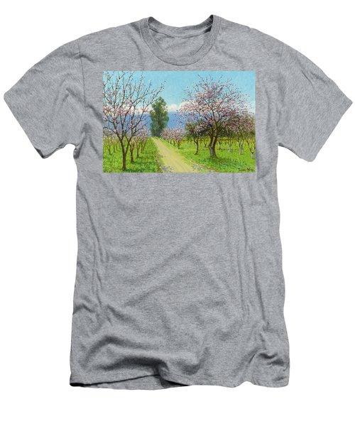 Almond Blossoms, Los Altos Men's T-Shirt (Athletic Fit)