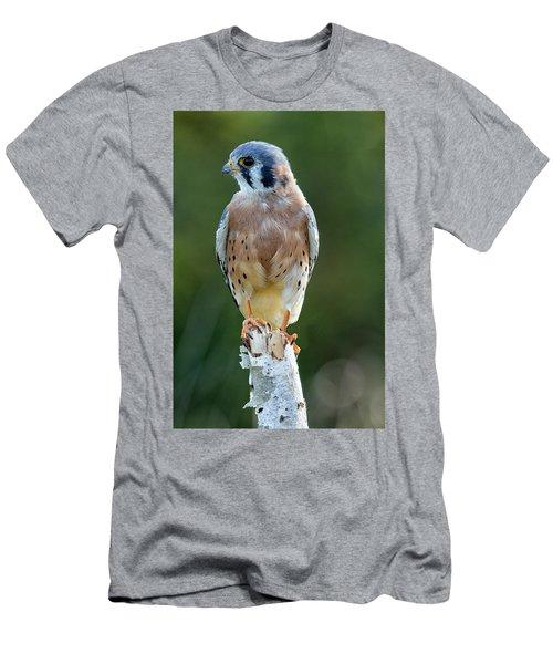 American Kestrel 9251502 Men's T-Shirt (Athletic Fit)
