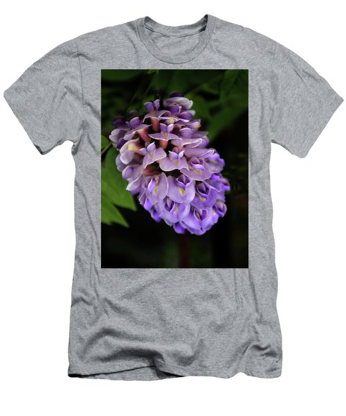 Amethyst Falls Men's T-Shirt (Athletic Fit)