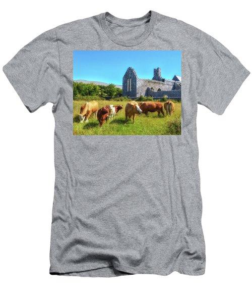 Ancient Cows Men's T-Shirt (Athletic Fit)