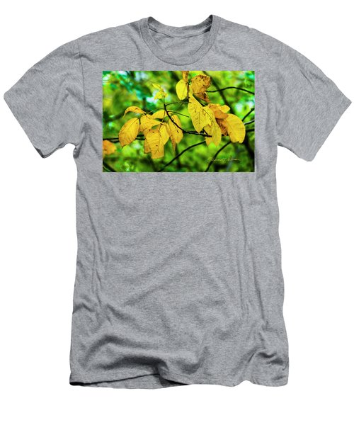 Men's T-Shirt (Athletic Fit) featuring the photograph Autumn Color Yellow by Edward Peterson