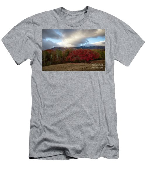 Autumn Foothills Men's T-Shirt (Athletic Fit)