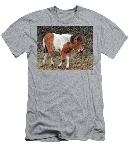 Autumn Glory N2bhs-ap On Assateague Island Men's T-Shirt (Athletic Fit)
