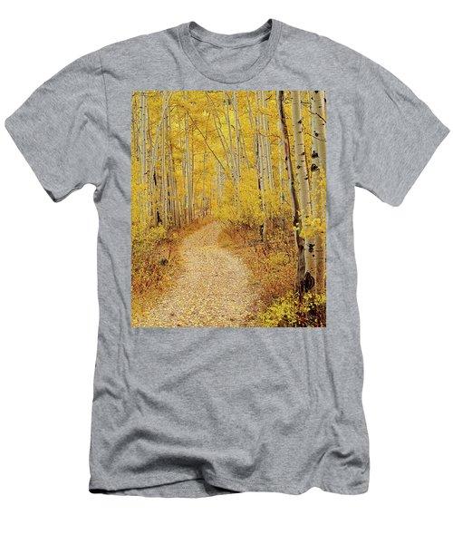 Autumn Road Men's T-Shirt (Athletic Fit)