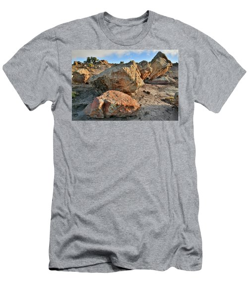 Balanced Rocks In Bentonite Site Men's T-Shirt (Athletic Fit)