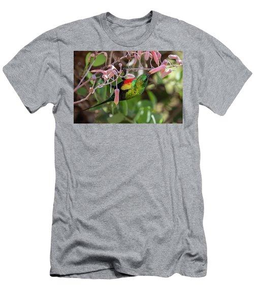 Beautiful Sunbird Men's T-Shirt (Athletic Fit)