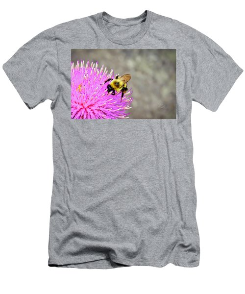 Bee On Pink Bull Thistle Men's T-Shirt (Athletic Fit)