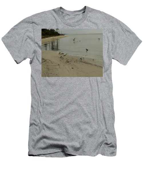 Birds On Beach Men's T-Shirt (Athletic Fit)